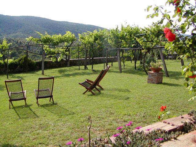 Montestigliano - Casa Marta - Image 1 - Sovicille - rentals