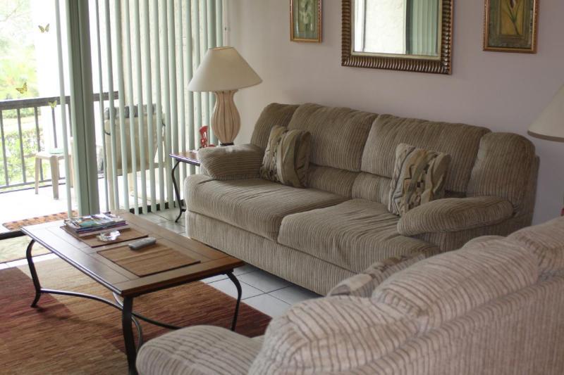 IMG_0358.JPG - 2 Bed 2 Bath Orlando Fla. Disney Vac. Rental Condo - Orlando - rentals