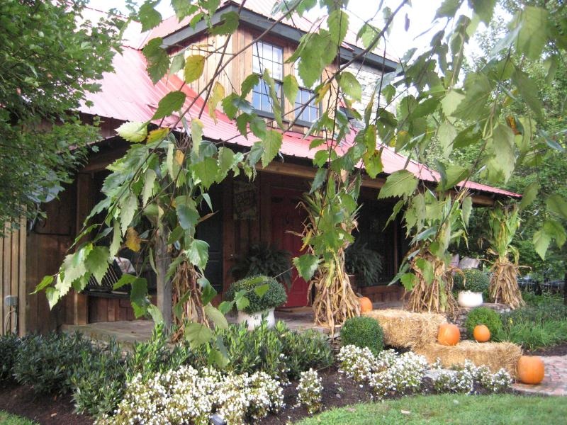 Th Cabin at Moonshine Hill in the Fall - Luxury Cabin,Lake, Pavilion,Treehouse, Franklin, Tn,  Pets allowed! - Franklin - rentals