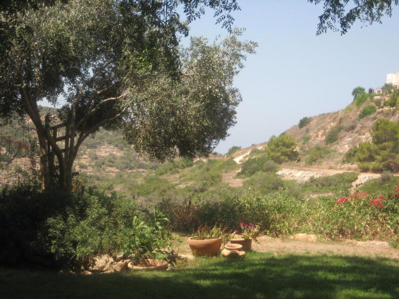 Gorgeous View of Nature Reserve - take in the sunset with a glass of wine - Holiday House by the Nature Reserve (B&B Optional) - Zichron Yaakov - rentals