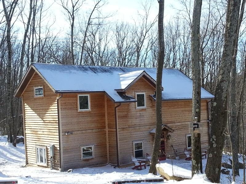 Exterior - winter - Cedar cabin nestled in private setting. Deep Creek - McHenry - rentals