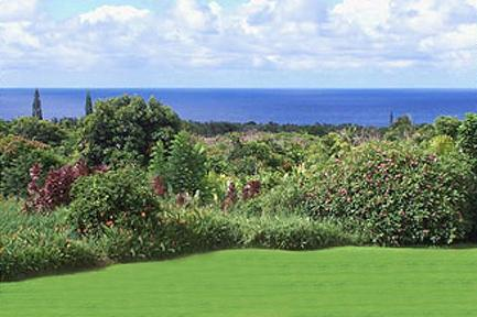Part of Huge Ocean View from Great Room and Master - Oceanview 4 Bedroom House on 3 Acres Near Beaches - Hana - rentals