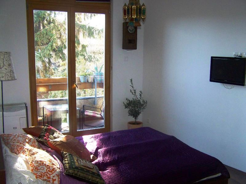 bright and cozy studio with all the comforts you need to relax in your holliday - Cozy studio at the Castle with balcony and garden - Budapest - rentals