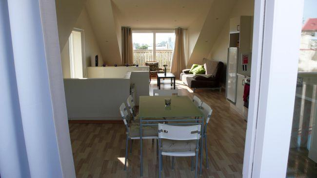 001 - Two bedroom penthouse apartment - Reykjavik - rentals