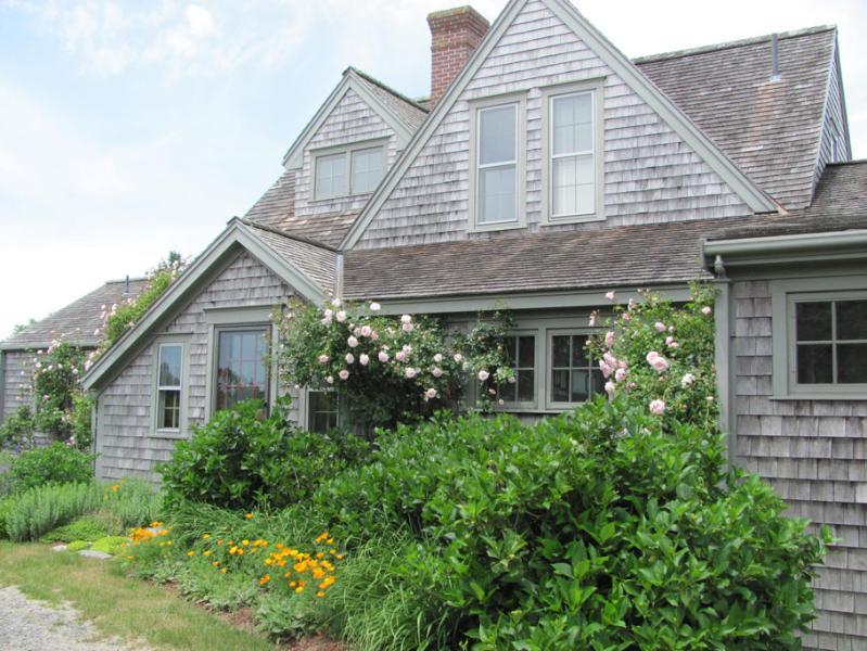 20 Tautemo Way - Image 1 - Nantucket - rentals