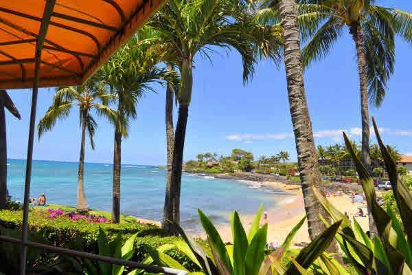 view from beach house next to 108 w/swimming snorkeling beach - Oceanfront Sunny Poipu Ground Level Large Lanai! - Poipu - rentals