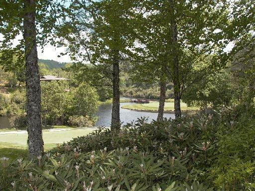 A Bird's Eye View- 99 Lake Villa Ct - Image 1 - Highlands - rentals