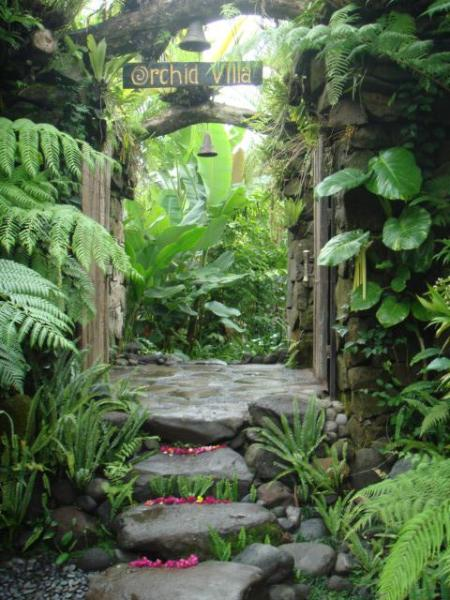Welcome to Orchid Villa - A Boutique Homestay in the mountains - Orchid Villa - Peace, Harmony & Nature - Ubud - rentals