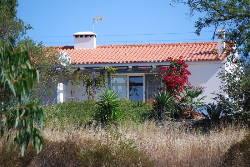 Casa Passaro, Nature, Silence, Culture and Beach - Image 1 - Santiago do Cacem - rentals