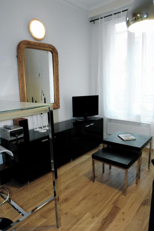salon1 - eb944320-55d3-11e2-b9fa-b8ac6f94ad6a - Paris - rentals
