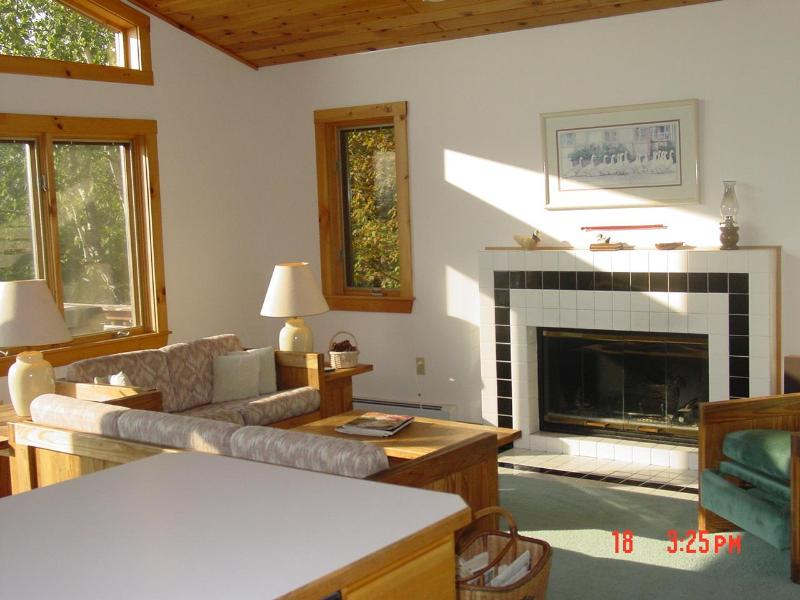 Living Room - Elegant Chalet located in the White Mountains - Madison - rentals