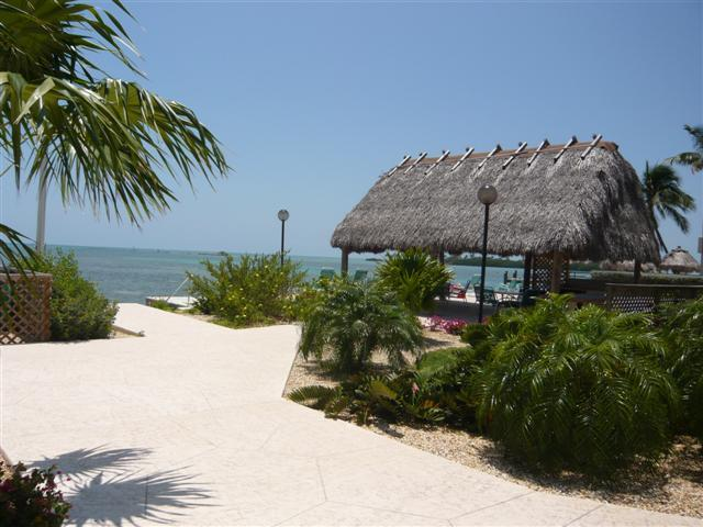 Tiki - THE PALMS 417 - Islamorada - rentals