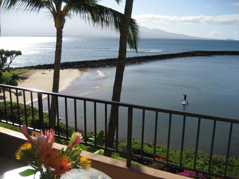 from lanai you look out at Haleakala volcano in the east - Maui Oceanfront, Romantic, Large Lanai, free Wi-fi - Maalaea - rentals