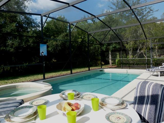 Pool - TripAdvisor Award Winner 2011, 2012 & 2013. - Kissimmee - rentals