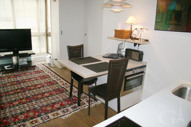 Living Room/Kitchen area - Beautiful 1 Bedrm Apartment in Heart of Paris! - Paris - rentals
