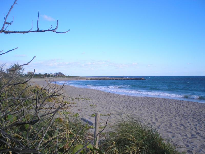 Steps to Beach - Jupiter Vacation Rental! - Jupiter - rentals