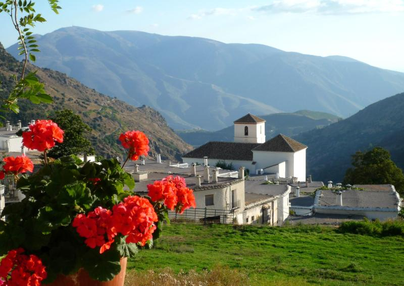 View from terrace - Apartment in Bubion, Las Alpujarras - Bubion - rentals