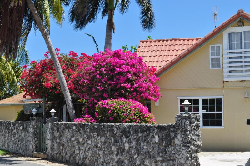 Street view - Tiki House Grand Cayman, Seven Mile Beach Area - West Bay - rentals
