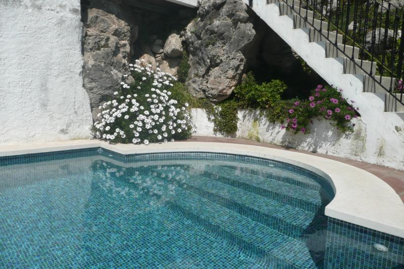 The steps to the gated Swimming-pool - Casa Beni - gorgeous views down valley to the sea - Canillas de Aceituno - rentals
