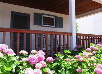Property 11997 - Heavenly House with 1 BR/1 BA in Cape May (Sea Lily # 2 11997) - Cape May - rentals