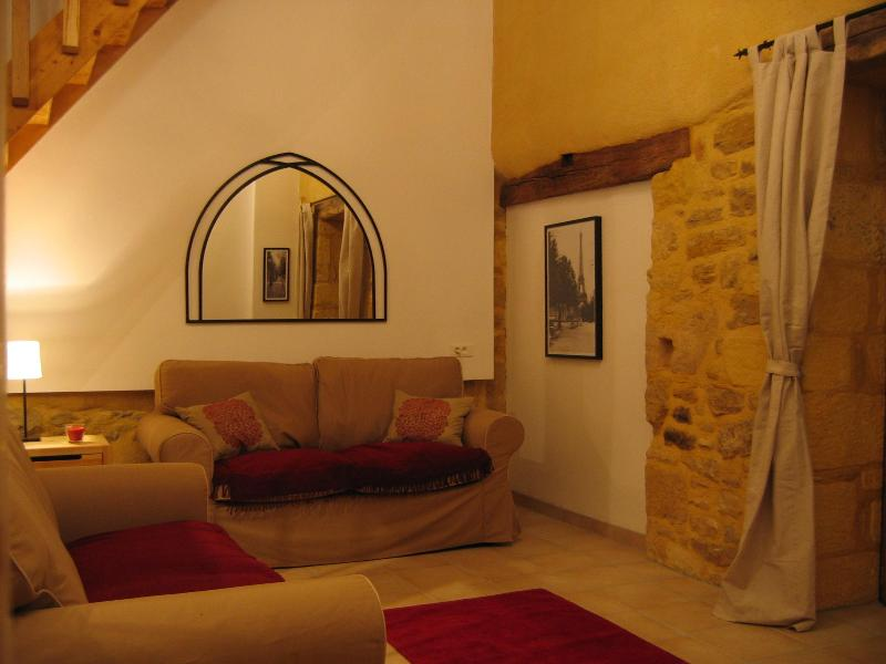 lounge - Sarlat La Petite Grange barn conversion pool views - Sarlat-la-Canéda - rentals