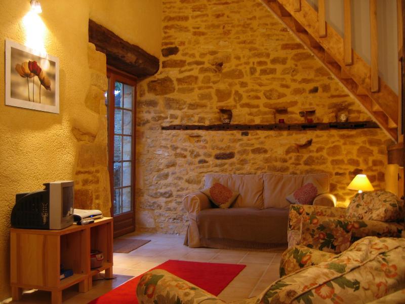 La Grange - Sarlat, La Grange, barn conversion, pool, views - Sarlat-la-Canéda - rentals