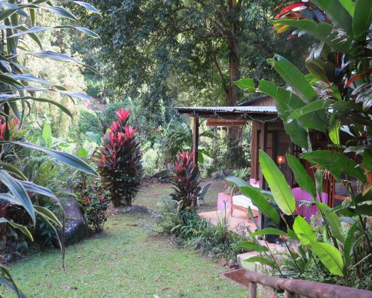Off the beaten trail and into the Wild - The JungaLow - Utuado - rentals