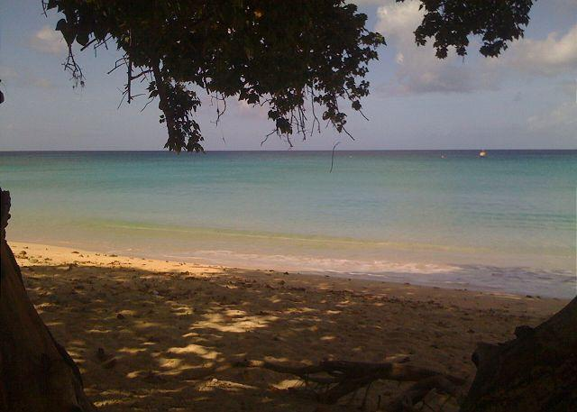 Beach - Beautiful Barbados at a great price! - Speightstown - rentals