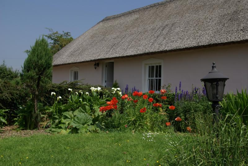 Jack's Cottage - Jack's Wonderful Thatched Cottage 5 to15% discount - Dungarvan - rentals