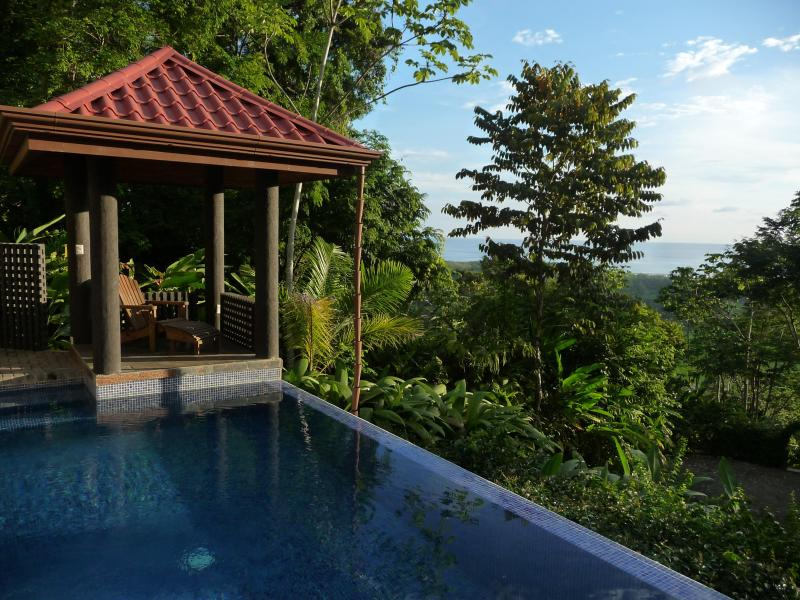 Private Pool - Villa Exotica - Luxury, Sweeping views & concierge - Dominical - rentals