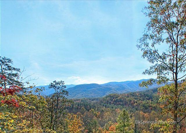 Brand New 1 Bedroom Luxury Cabin with Amazing Views - Image 1 - Gatlinburg - rentals