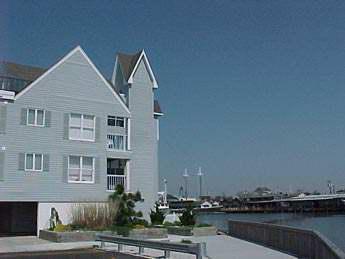 Property 8848 - 1415 Harbor Lane 8848 - Cape May - rentals