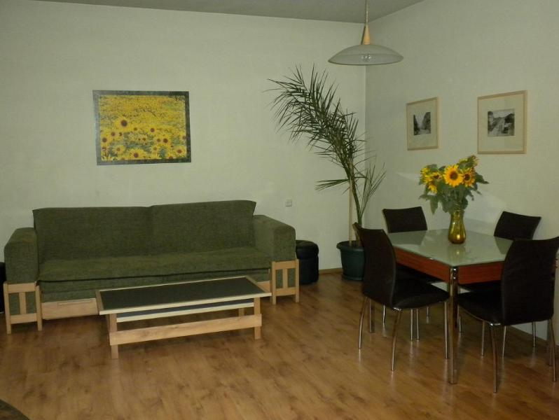 The sofa could be opened and turned into a bed - Ararat View Apartment - Yerevan - rentals