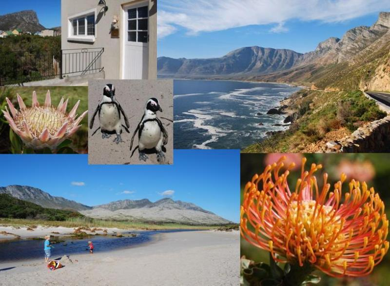 Dreams is an Ideally Located Holiday Home 100 m to Beach in Beautiful Area - Relax at Dreams - Holiday Home 100m to Sandy Beach - Pringle Bay - rentals