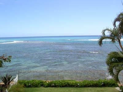 View from upstairs - Wow! Coconut Gem 3BR/3.5BA on DH, OF, A/C - Honolulu - rentals