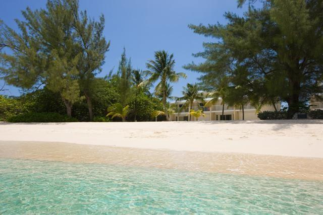 White Sands #9 - Image 1 - Seven Mile Beach - rentals