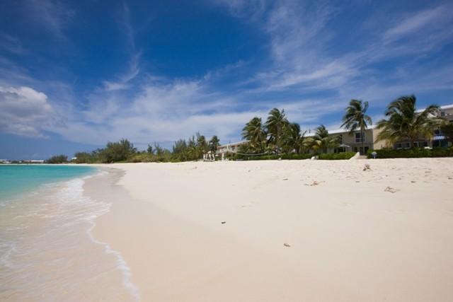 Sundowner #11 - Image 1 - Seven Mile Beach - rentals