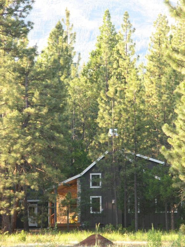View of Cabin through the trees - Beautiful home in the woods, Burney, California - Burney - rentals