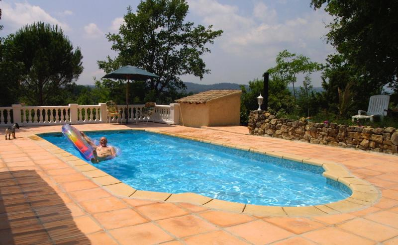 pool and Terrace - Villa Amboise - Montauroux - rentals