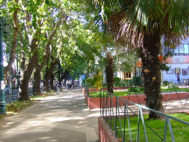 all you need in  Vina del Mar's best neighbourhood - Image 1 - Vina del Mar - rentals