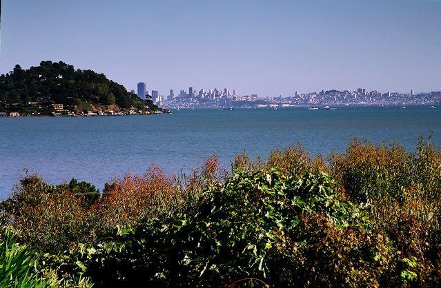 View of San Francisco and the Bay - Tiburon - Private Gardens, Views of San Francisco - Tiburon - rentals