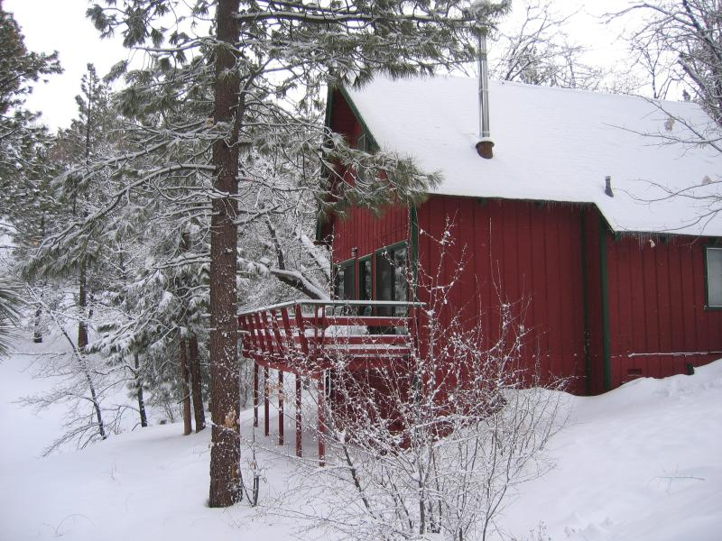 Eagles Flight Cabin Nestled in the Woods - CHARMING CABIN w/ SPA & SLEDDING HILL-Near Slopes - Big Bear City - rentals