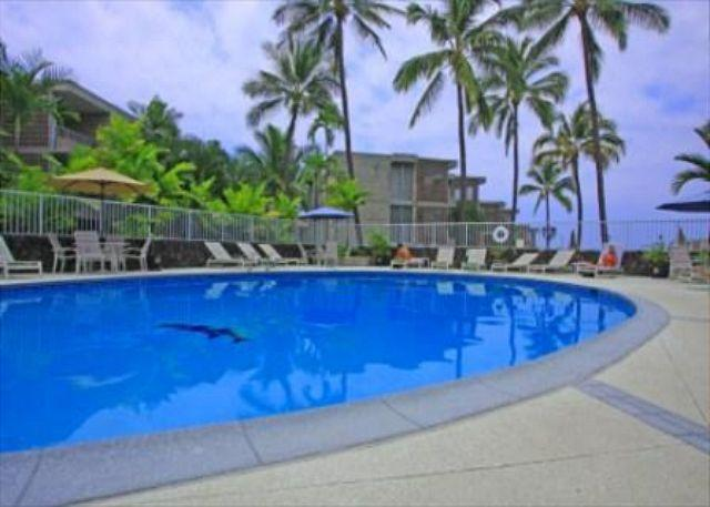 Pool at Alii Villas - Alii Villas 340 Gorgeous Top floor Condo. Wifi! Great price! - Kailua-Kona - rentals