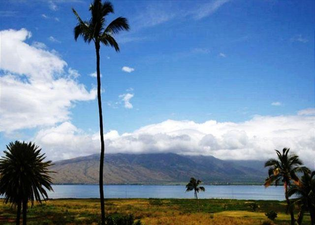 Kauhale Makai Oceanfront Complex with nice pool and hot tub. Great Rates!! - Image 1 - Kihei - rentals