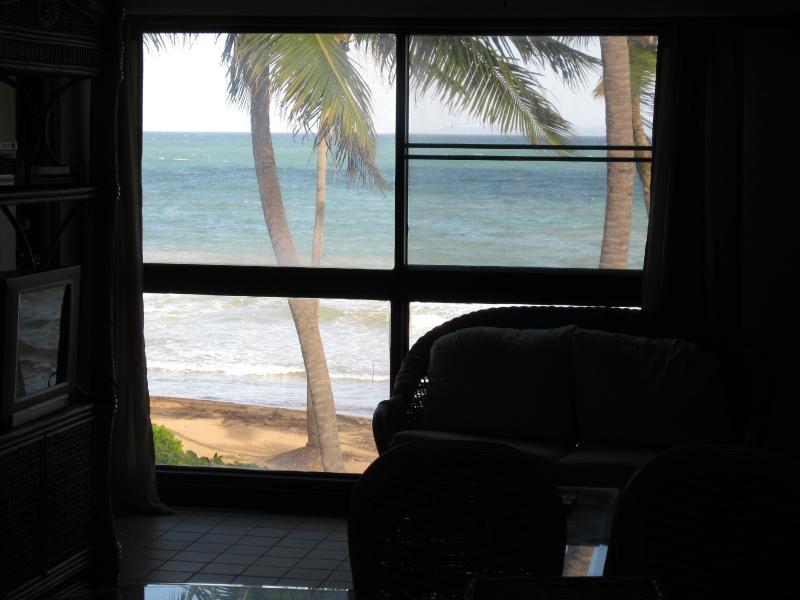 BEACH VILLA 103 - Image 1 - Humacao - rentals