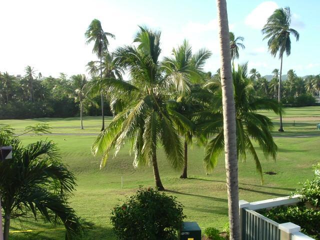 BEACH VILLA 169 - Image 1 - Humacao - rentals