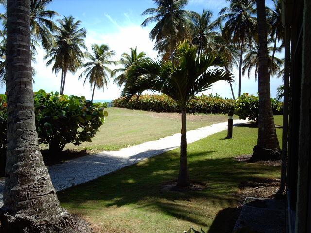 BEACH VILLA 175 - Image 1 - Humacao - rentals