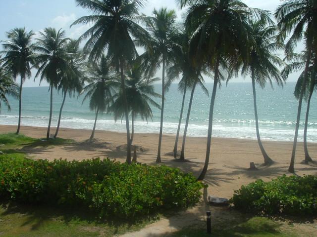 BEACH VILLA 179 - Image 1 - Humacao - rentals