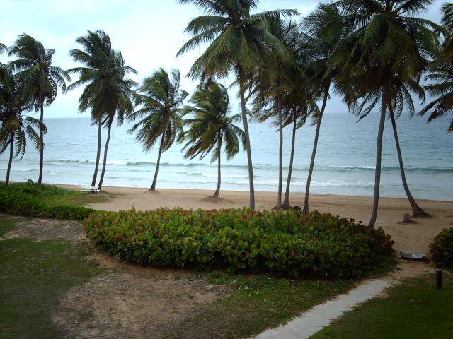 BEACH VILLA 181 - Image 1 - Humacao - rentals