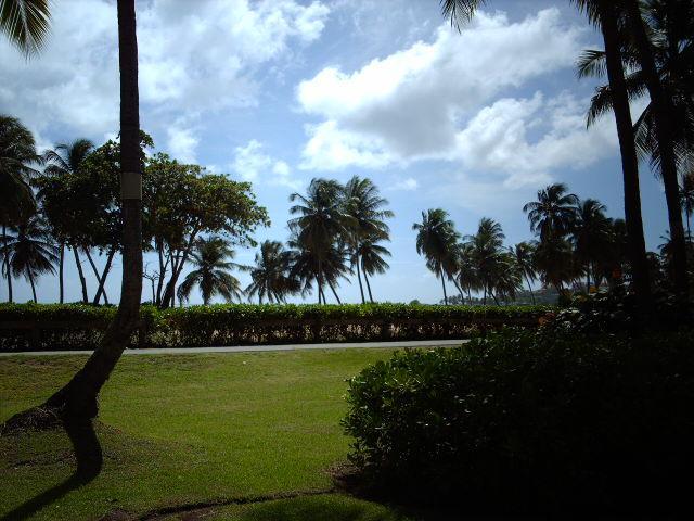 BEACH VILLA 228 - Image 1 - Humacao - rentals